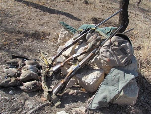 شکارچی کبک در دام محیط بانان ابهری گرفتار شد